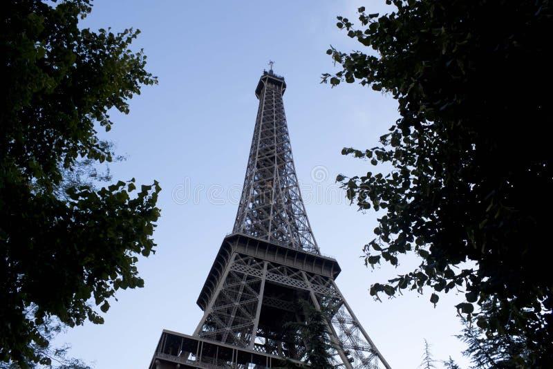 Tour Eiffel en métal entre les feuilles, Paris photo stock