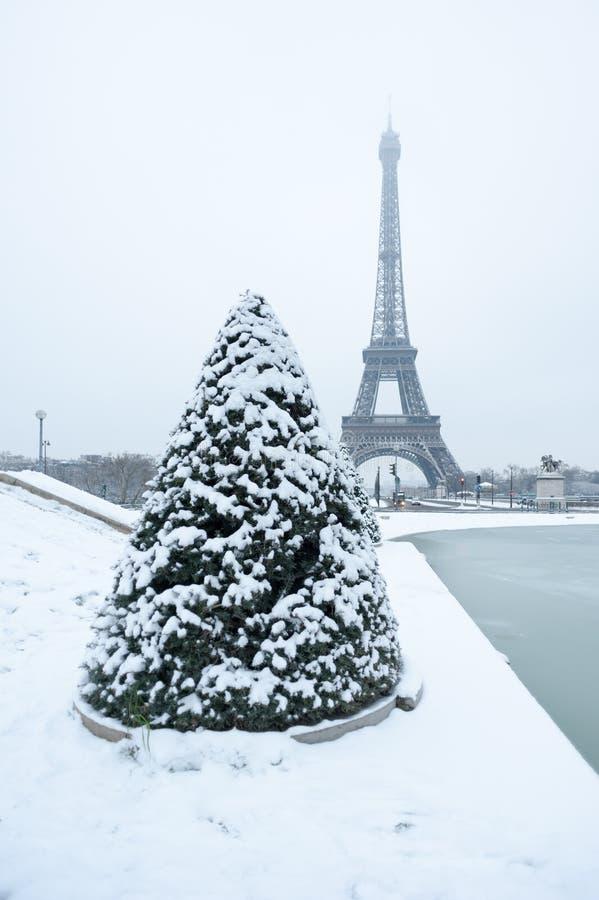 Tour Eiffel et pin sous la neige en hiver - Paris image libre de droits