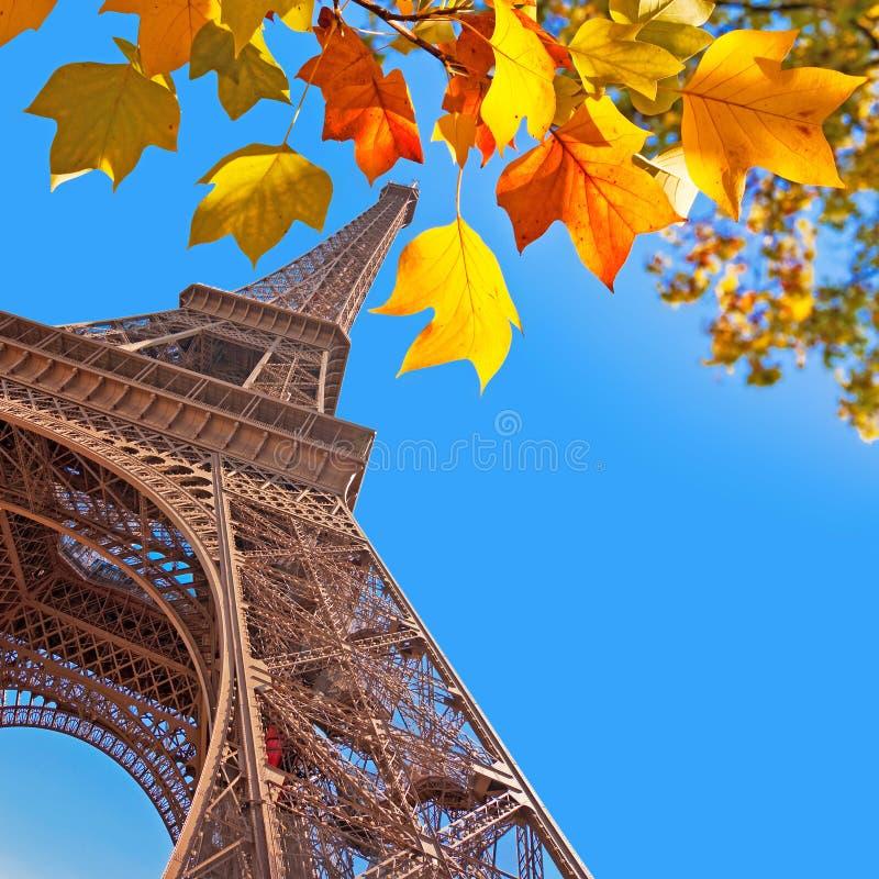 Tour Eiffel, feuilles d'automne jaunes photos stock