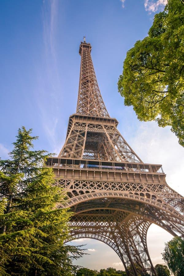 Tour Eiffel parmi les arbres photographie stock libre de droits