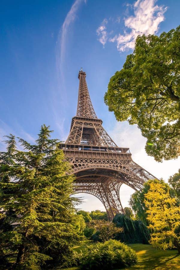 Tour Eiffel parmi les arbres dans l'heure d'été images stock