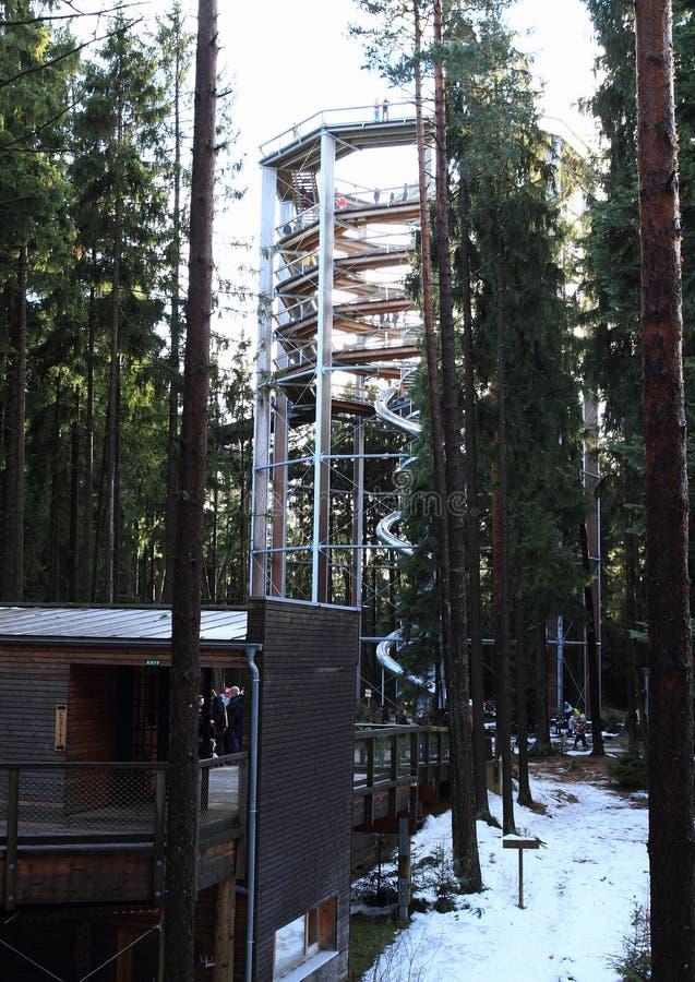 Tour et entrée à la surveillance de Lipno d'arbres de traînée photo stock