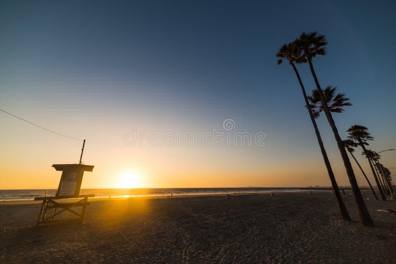 Tour et palmiers de maître nageur en plage de Newport image libre de droits