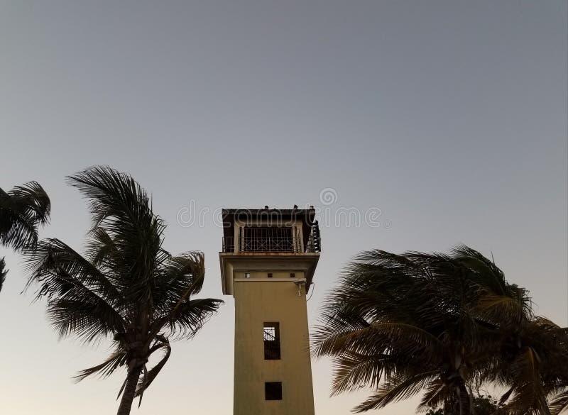Tour et palmiers en La Guancha dans le maquereau, Puerto Rico photos libres de droits
