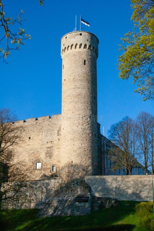 Tour Hermann et Parlement Toompea, jardin des gouverneurs, Tallinn, Estonie image libre de droits