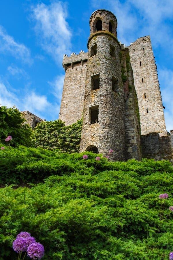 Tour Irlande de château de cajolerie image libre de droits
