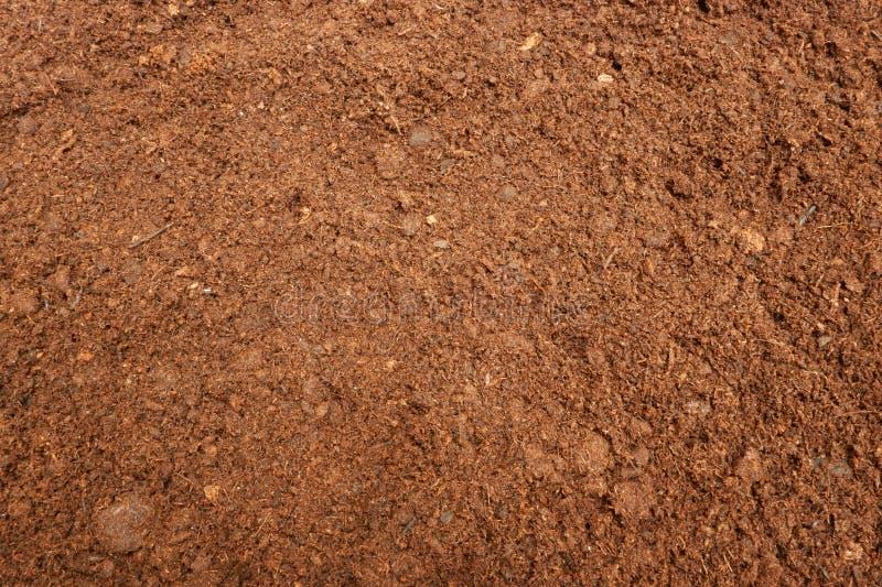 Tourbe Moss Soil Background image stock