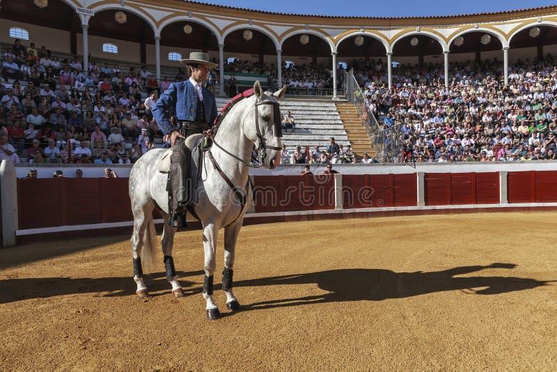 Toureiro espanhol a cavalo Pablo Hermoso de Mendoza Starting o paseíllo para começar a celebração em Pozoblanco fotografia de stock royalty free