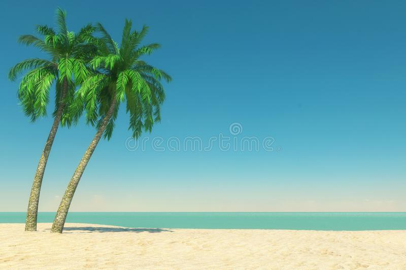 Tourism and Travel Concept. Empty Tropical Paradise Beach with White Sand and Coconut Palm Trees. 3d Rendering stock image