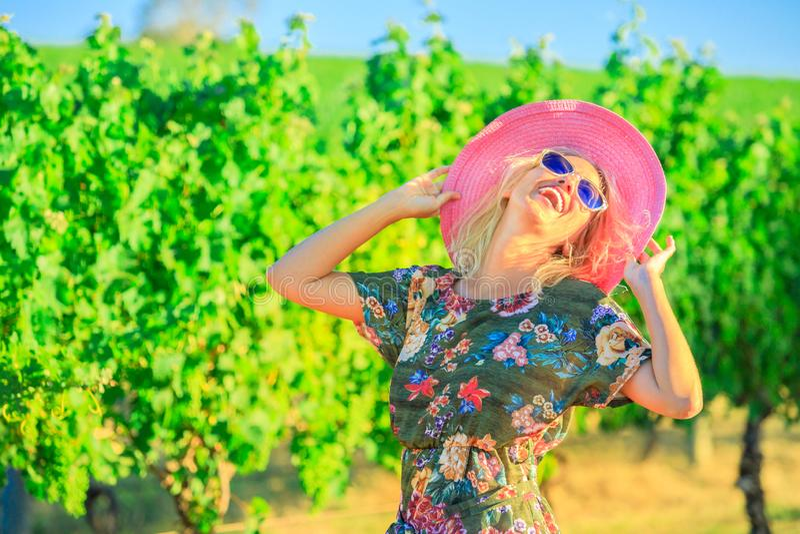 Tourisme d'établissement vinicole de vignoble photographie stock