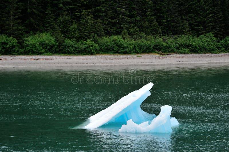 Tourisme en Alaska 3 photographie stock libre de droits