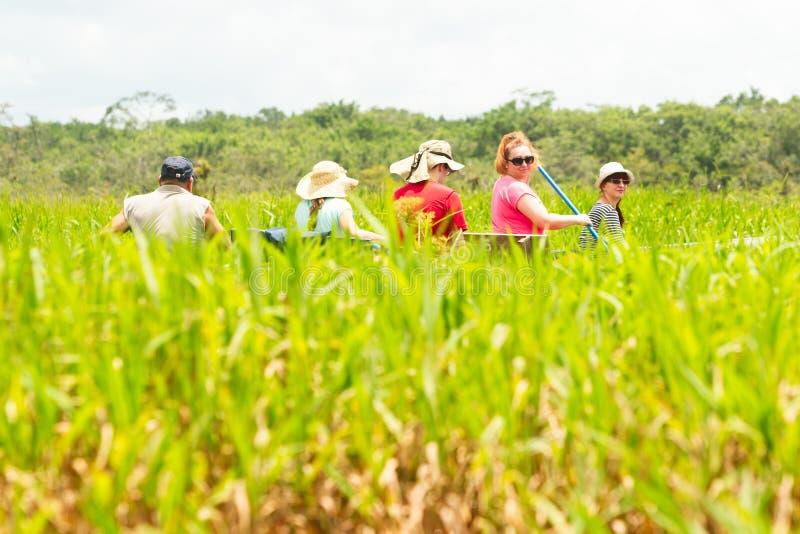 Tourismus im amazonischen Dschungel stockfoto