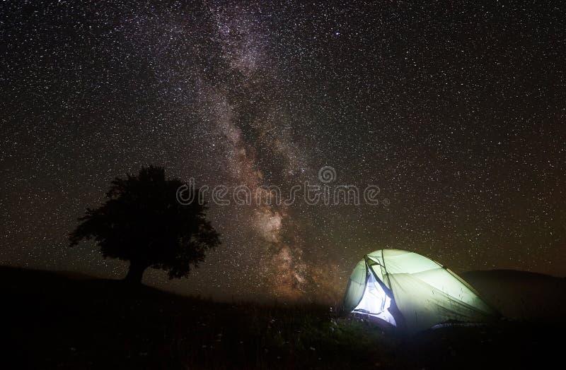 Tourist belichtete Zelt nahe dem großen Baum und kampierte in den Bergen nachts unter sternenklarem Himmel lizenzfreies stockfoto