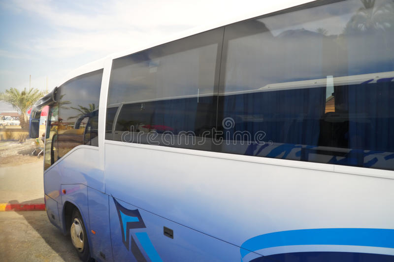 Tourist bus on a background of palm trees royalty free stock images