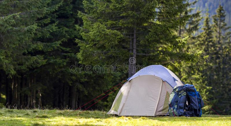 Tourist camp on green meadow with fresh grass in Carpathian mountains forest. Hikers tent and backpacks at camping site. Active li royalty free stock photography