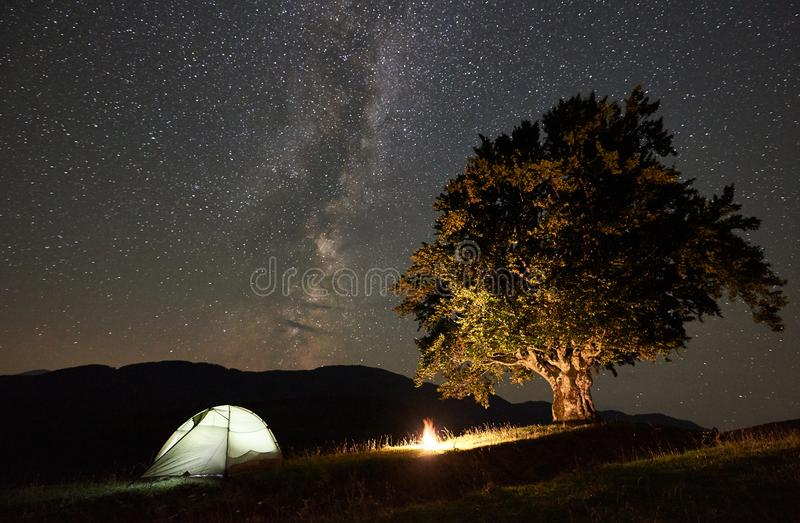 Tourist camping at night in the mountains under starry sky. Tourist camping near big tree at night in the mountains. Illuminated tent and bonfire under stock image