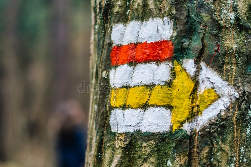 Tourist color sign on the tree with an arrow. Close-up view, red and yellow color stock images