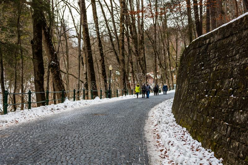 Tourist couple on their way to Peles Castle in Sinaia, Romania. Icy road in a forest. stock photo
