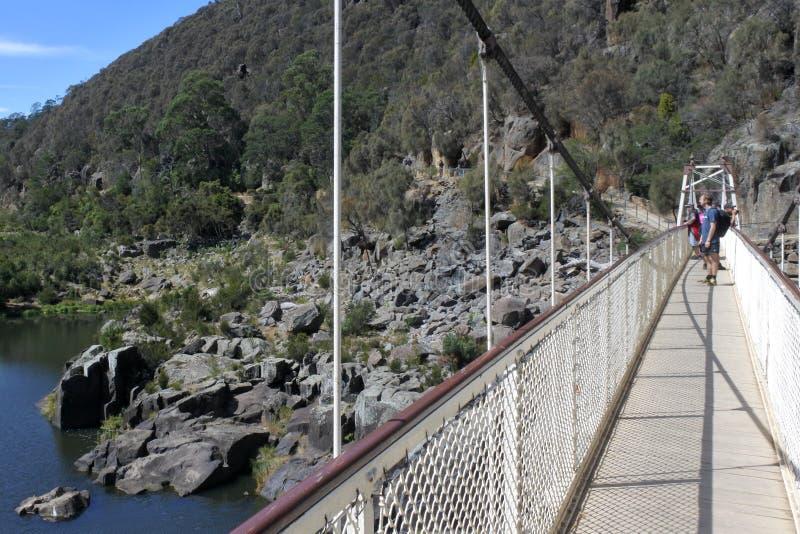 Tourist crossing Alexandra Suspension bridge in Tasmania Australia royalty free stock image