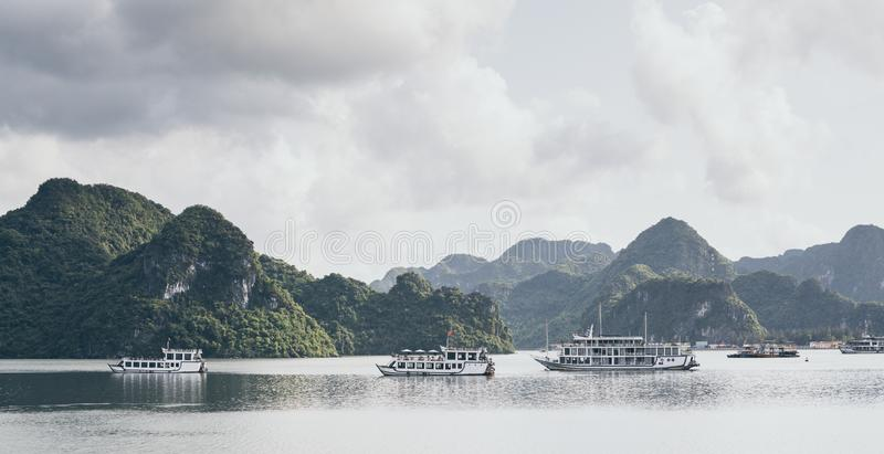Tourist cruise ships sailing among limestone mountains in Halong Bay, Vietnam. Framing with tree leaves, boat, sea, vietnamese, ride, northern, beach, holiday stock photo