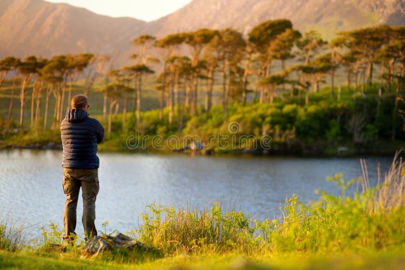 Tourist, der die Ansicht von zwölf Kiefern Insel, Connemara, Grafschaft Galway, Irland bewundert lizenzfreie stockfotos