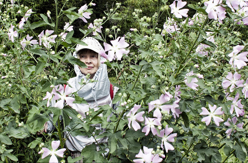 Tourist in the forest. Portrait of an elderly tourist among flowering herbs in a mountain forest royalty free stock images