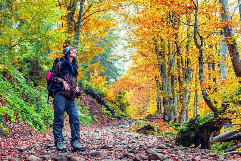 Tourist girl in yellow autumn forest royalty free stock photo