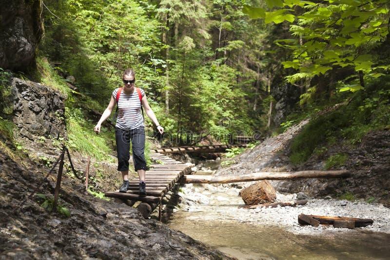 Download Tourist Girl Walking Through The Mountain Forest Stock Photo - Image: 14124548