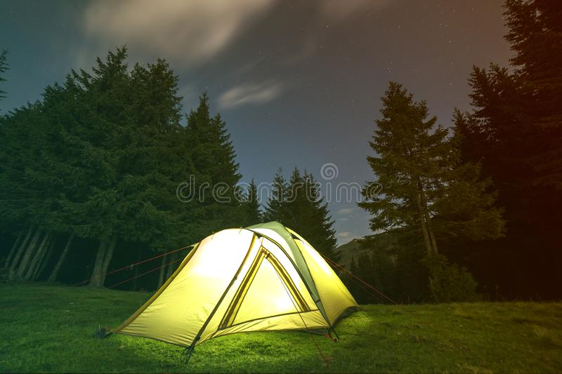 Tourist hikers tent brightly lit from inside on green grassy forest clearing among tall pine trees under dark blue starry sky on. Distant mountain background royalty free stock photography