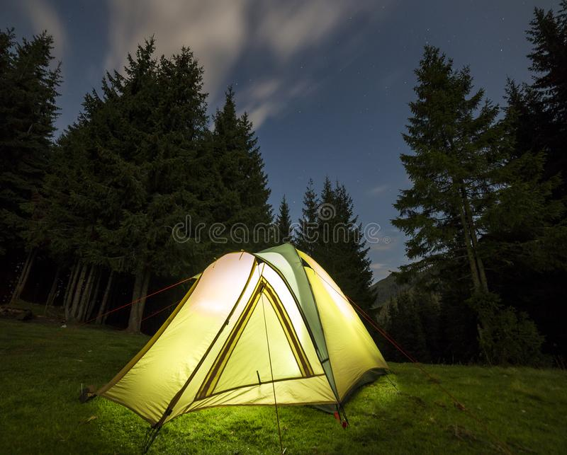 Tourist hikers tent brightly lit from inside on green grassy forest clearing among tall pine trees under dark blue starry sky on. Distant mountain background royalty free stock photos