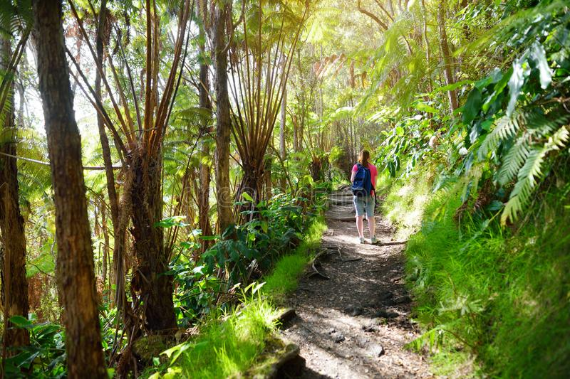 Tourist hiking on Kilauea Iki trail in Volcanoes National Park in Big Island of Hawaii royalty free stock image