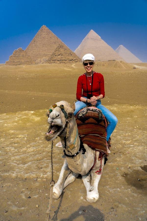 Tourist Leslie Plimpton fährt Kamel vor den Großen Pyramiden Ägyptens lizenzfreie stockfotos
