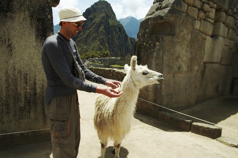 Download Tourist and llama stock image. Image of house, incan, hidden - 1585381
