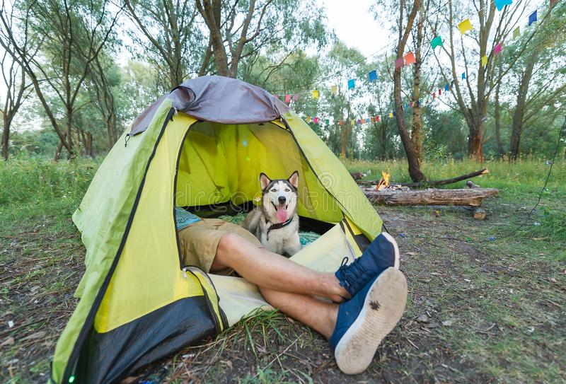 Tourist lying in tent with dog, camping in autumn nature royalty free stock photo