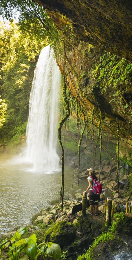 Tourist At Misol Ha Waterfall stock photo