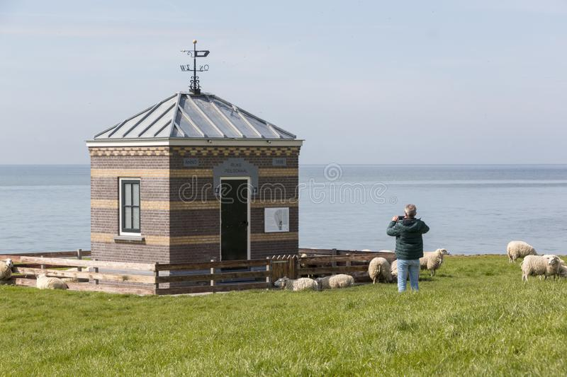 Tourist photographing an Idyllic scenery with sheep, the sea and a traditional building. Tourist photographing an idyllic scenery on the dyke of Hindeloopen at stock photography