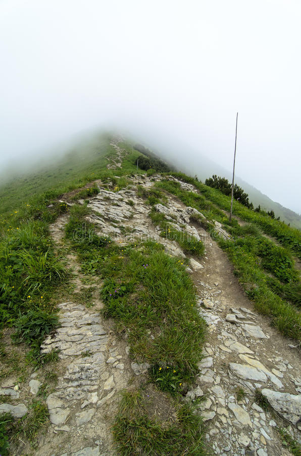 Tourist route in fog in National park Mala Fatra royalty free stock images