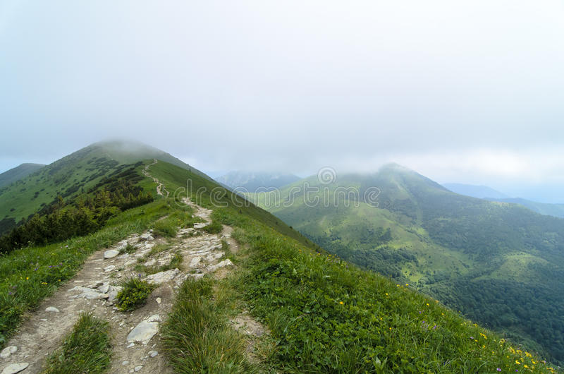 Tourist route in fog in National park Mala Fatra royalty free stock photo