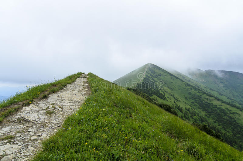 Tourist route in fog in National park Mala Fatra stock photography