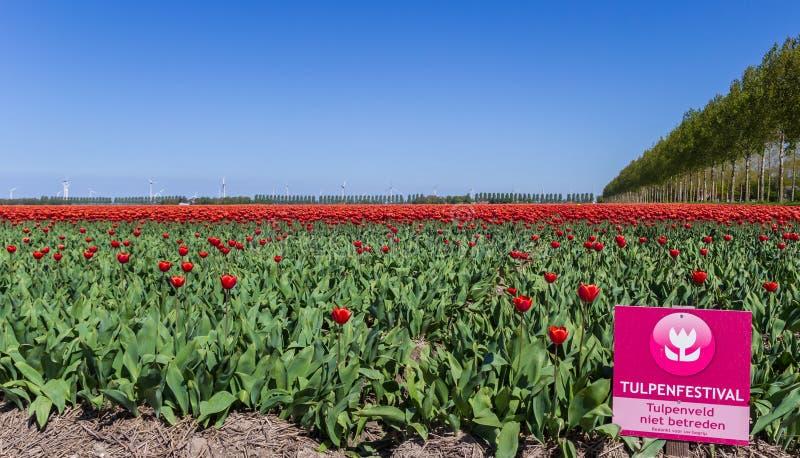 Tourist sign in front of a tulip field in Noordoostpolder stock photos