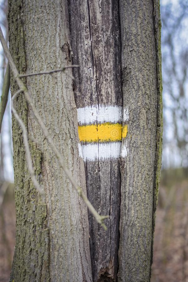Tourist sign on the tree. Simple and functional royalty free stock images