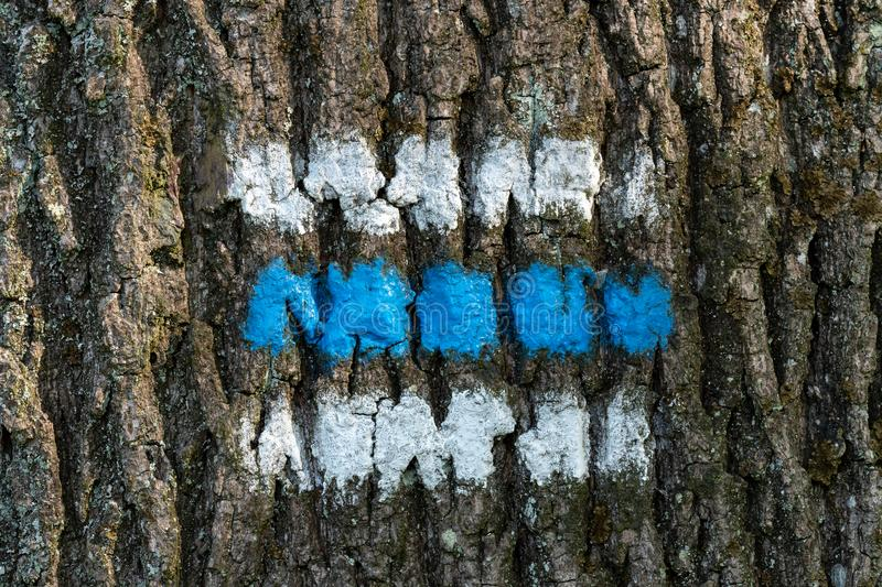 Tourist sign on the tree. For a tourist trip royalty free stock image