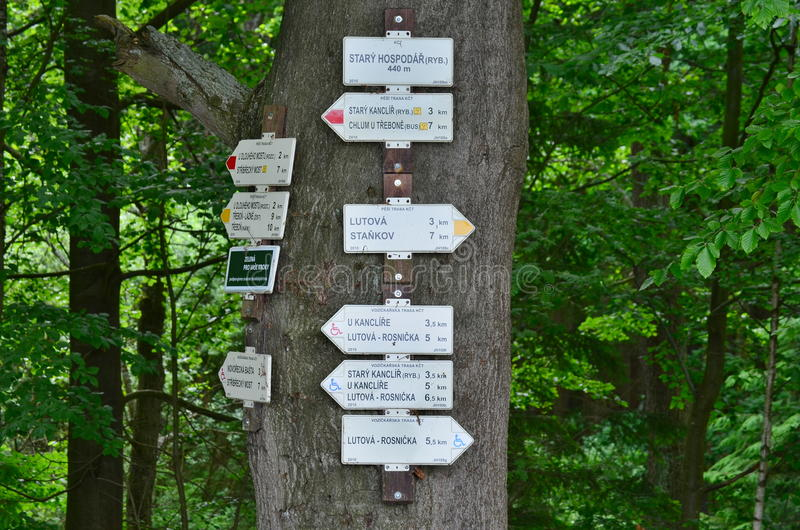Download Tourist Signposting On The Bark Of A Tree Stock Image - Image: 58393045