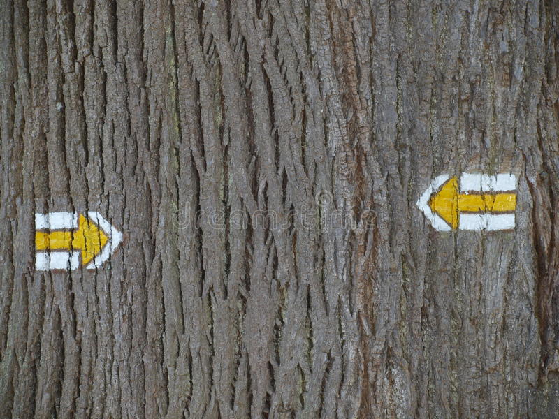 Download Tourist Signposting On The Bark Of A Tree Stock Image - Image: 39406561