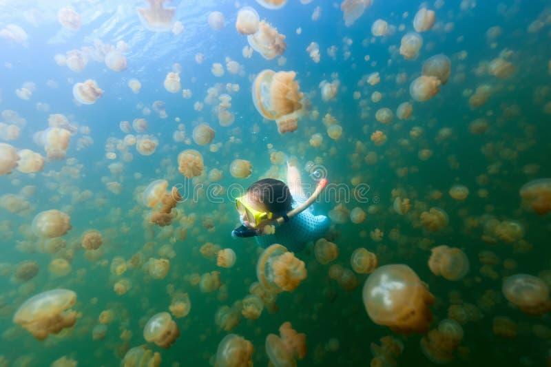 Tourist snorkeling in Jellyfish Lake stock photo