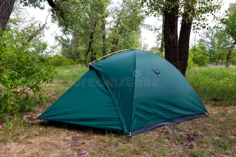 Download Tourist tent in forest stock photo. Image of natural - 24777148