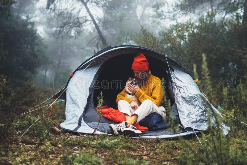 Tourist traveler in camp tent hugging red shiba inu on background froggy rain forest, hiker woman kiss puppy dog in mist nature stock images