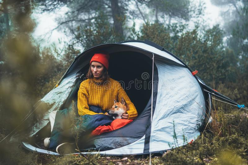 Tourist traveler hugging red shiba inu in camp tent on background froggy rain forest, hiker woman with puppy dog in mist nature royalty free stock photos