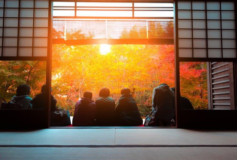 Tourist view of autumn Japanese maple garden in Kyoto,Japan stock image