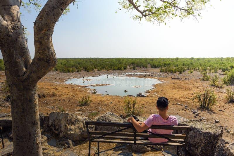 Tourist waits for wildlife at the Moringa waterhole near Halali, Etosha, Namibia royalty free stock photography